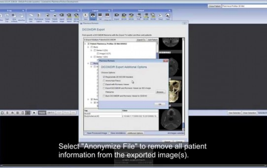 Export multiple 2D and 3D images from Planmeca Romexis®